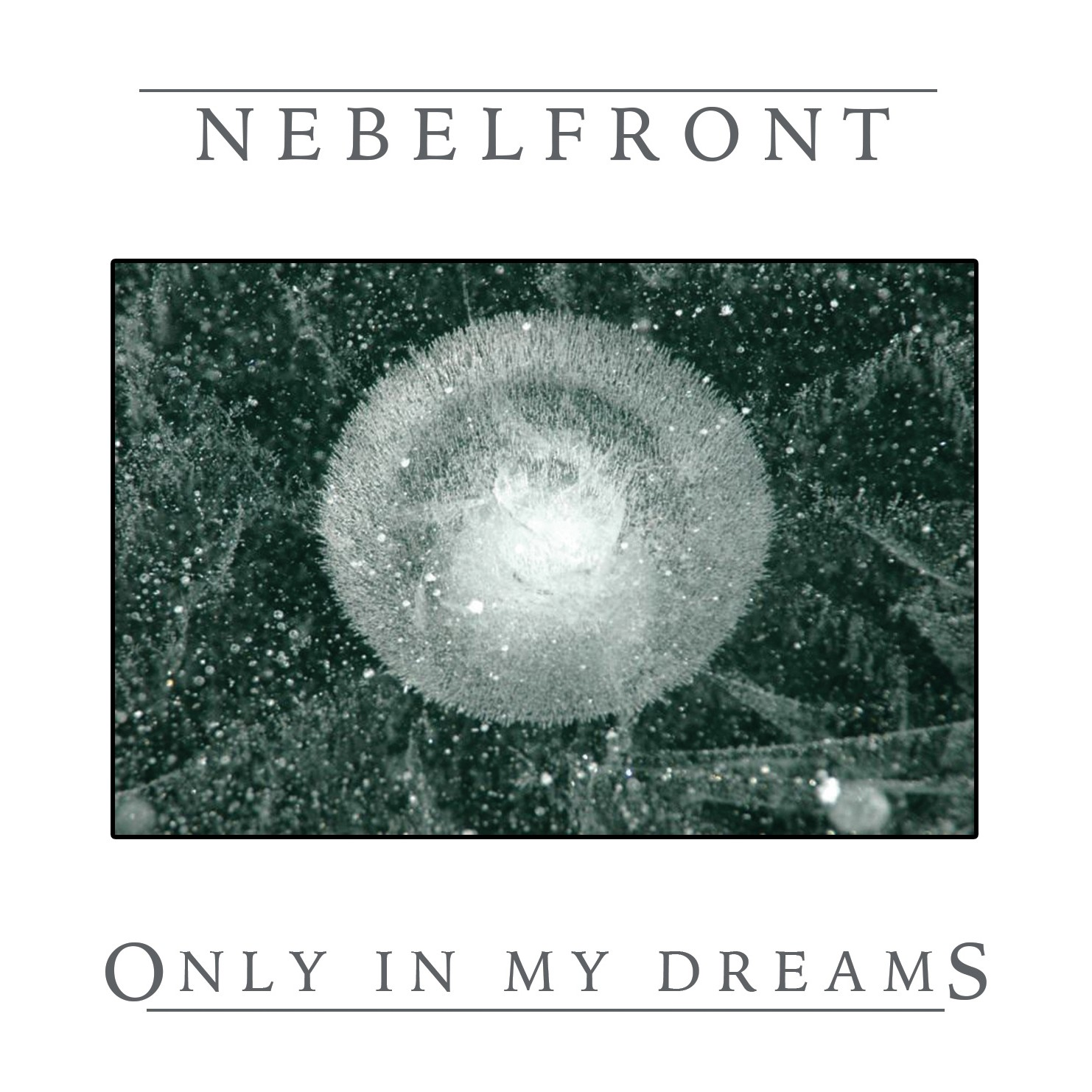 Nebelfront Album Only in my Dreams